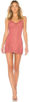 NBD Aiesha Dress