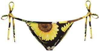 Dolce & Gabbana Sunflower-print bikini briefs