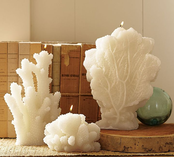 Coral Shaped Candles