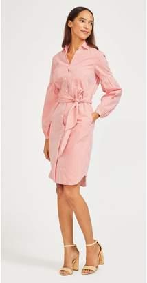 J.Mclaughlin Millbury Shirt Dress in Stripe