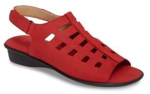 Sesto Meucci Elita Cutout Slingback Sandal