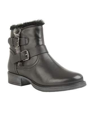 Daniel Footwear Lotus Pizarro Ankle Boots