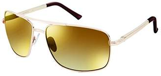 Southpole Men's 5010sp-gldbr Aviator Sunglasses