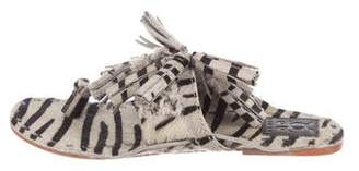 Figue Zebra Ponyhair Sandals
