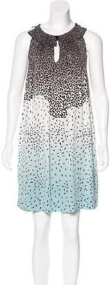 Diane von Furstenberg Armilla Silk Dress