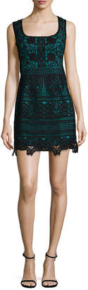 Nanette Lepore Nanette Viva Italia Lace Flared Dress
