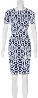 Alexander McQueen Short Sleeve Jacquard Dress