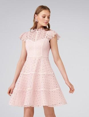 Forever New Ella Lace Skater Dress - Blush - 4