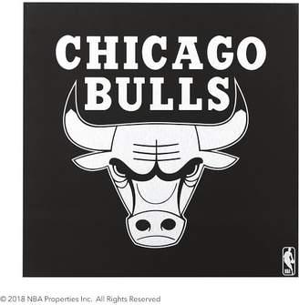 Pottery Barn Teen NBA Wall Art, Chicago Bulls
