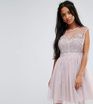 Little Mistress Petite Lace Applique Top Mini Tulle Prom Dress