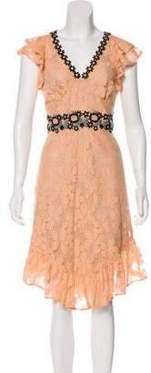 Anna Sui Crochet-Trimmed Lace Dress