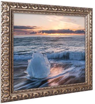 Trademark Global Michael Blanchette Photography 'Crystal Floret' Ornate Framed Art