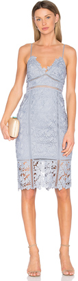 Bardot Botanica Lace Dress $139 thestylecure.com