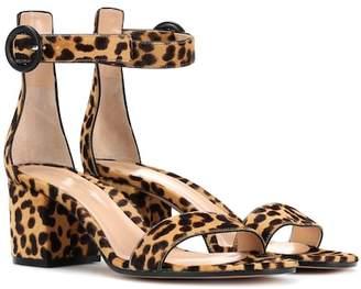 Gianvito Rossi Versilia 60 leopard-printed sandals