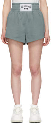 Alexander Wang Blue Lightweight Terry Shorts
