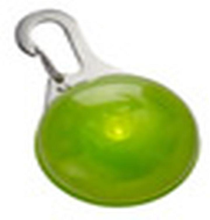 Container Store SpotlitTM LED Carabiner Light Green