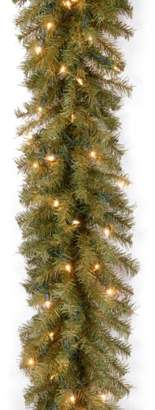 clear National Tree 9 Foot by 10 Inch Norwood Fir Garland with 50 Lights (NF-9ALO-1)