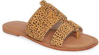 3e461bd2153 Caslon Mateo Genuine Calf Hair Slide Sandal