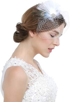 Hailie Bridal HailieBridal Women's Peacock Feather Bridal Birdcage Veil