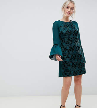 6966fdfbe4 Paper Dolls Petite velvet lace shift dress with sheer sleeve in emerald