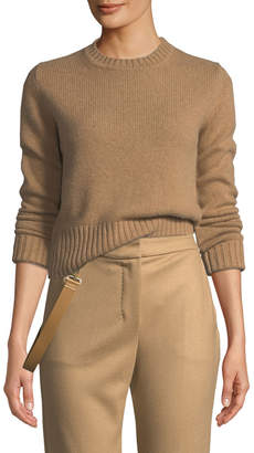 Max Mara Ceylon Crewneck Long-Sleeve Cashmere Sweater