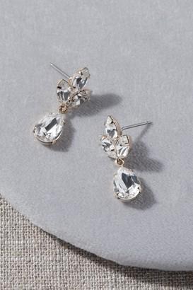 Ti Adoro Virginia Drop Earrings