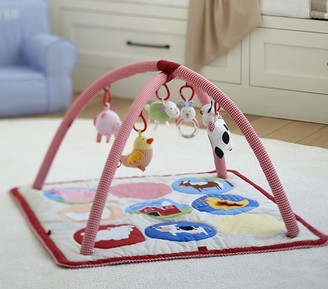 Pottery Barn Kids Skip Hop x pbk Fun on the Farm Activity Gym