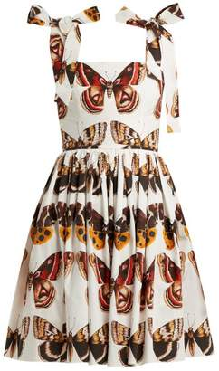 144972e56c3c Dolce   Gabbana Butterfly Print Cotton Poplin Mini Dress - Womens - Brown  White