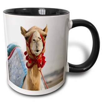 Walter 3dRose UAE, Dubai, Al Marqadh. Dubai Camel Racing Track-AS44 WBI0141 Bibikow - Two Tone Black Mug, 11-ounce