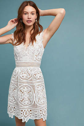 ML Monique Lhuillier x Anthropologie Yolande Lace Dress