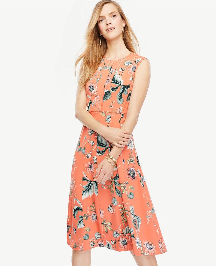 Ann TaylorPetite Coral Oasis Dress