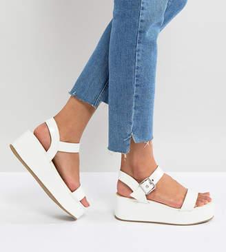 Asos TOUCAN Wedge Sandals