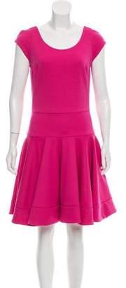 Douglas Hannant Fluted A-Line Dress