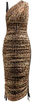 Dolce & Gabbana Leopard Print Cotton Blend Tulle Midi Dress - Womens - Leopard