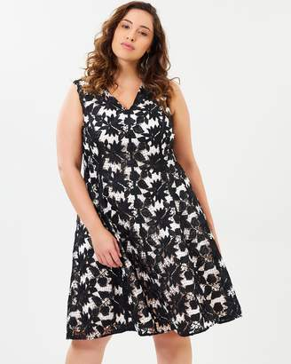 Studio 8 Bay Dress
