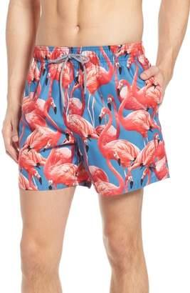 Ted Baker Pintano Slim Fit Flamingo Swim Trunks