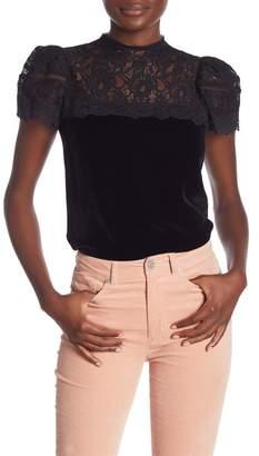 Rebecca Taylor Short Sleeve Lace Velvet Blouse