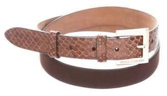 Dolce & Gabbana Suede Python-Trimmed Belt