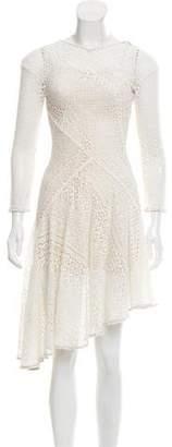 Lover Lace A-Line Dress