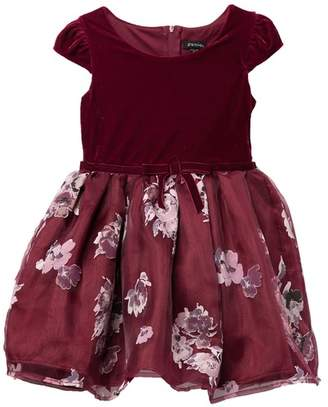 Zunie Cap Sleeve Velvet Floral Skirted Dress (Little Girls)