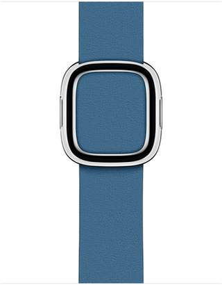 Apple 40mm Cape Cod Blue Modern Buckle - Medium
