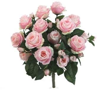 Rosdorf Park Rose Flower Floral Arrangement Flower