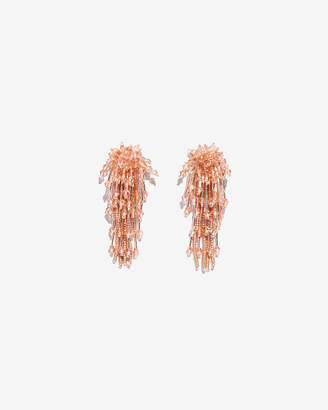 Express Faceted Post Back Fringe Earrings
