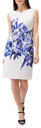 Precis Petite Printed Sheath Dress