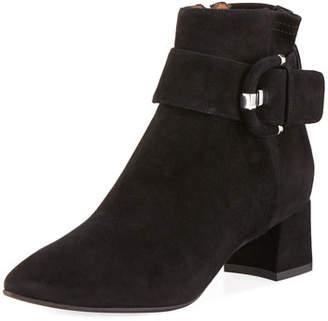 Aquatalia Phiona Suede Block-Heel Booties