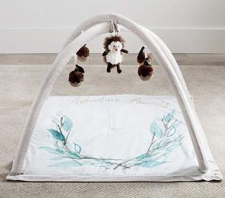 Pottery Barn Kids Woodland Activity Gym