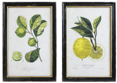Wayfair Sheila 2-Piece Lime & Lemon Framed Vintage Advertisement Set