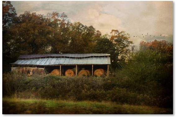 Trademark Fine Art Jai Johnson 'A Barn For The Hay' Canvas Art