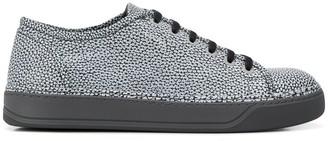 Lanvin metallic low top sneakers