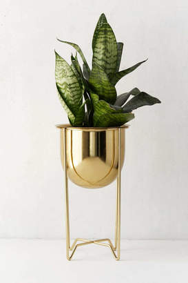 Gilded Bowl Planter + Stand